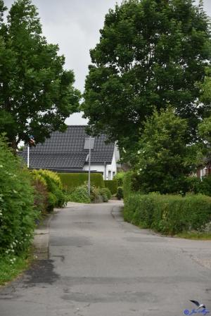 Dorfstraße in Olpenitz