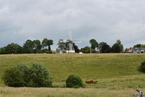 """Mühle """"Hoffnung"""" in Munkbrarup"""