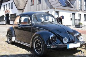 VW Käfer in Maasholm