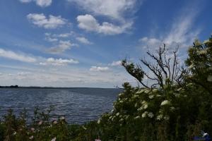 Schöne Aussicht in der Birk