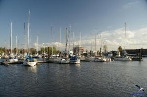 Jachthafen Finkenwerder