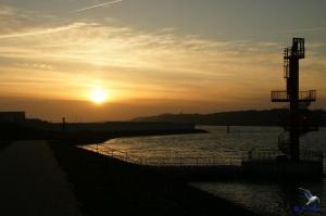Sonnenuntergang Finkenwerder