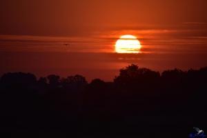Sonnenuntergang in Kappeln