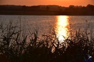 Sonnenuntergang in der Nähe von Kappeln