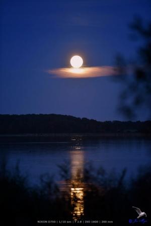 Der Mond schwebt über der Schlei