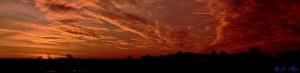 Sonnenaufgang an der Schlei