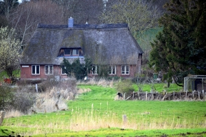 Ein schönes angeliter Haus in Boren